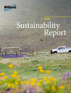 Williams 2019 Sustainability Report Cover